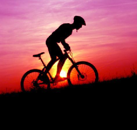 Mountain Trails Tours & Travel - Day Tours: Mt Bike