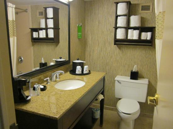 Hampton Inn Chicago Naperville: a bathroom with everything in easy reach