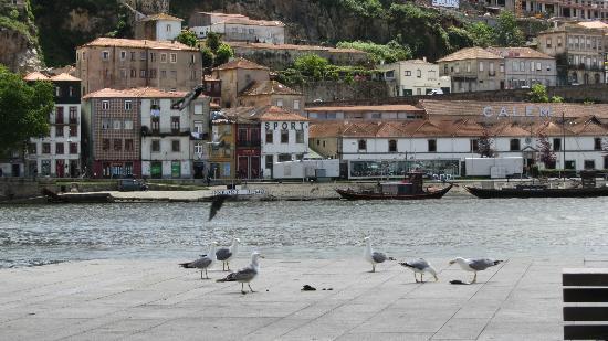 Oporto Mercearia : Vista do restaurante