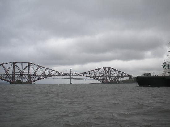 Forth Sea Safaris: Forth Railway Bridge