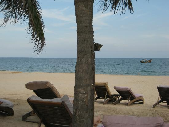Mia Resort Mui Ne : beautiful beach