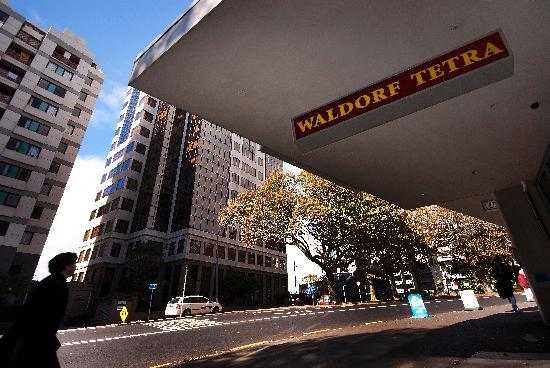 Waldorf Tetra Serviced Apartments: Central Auckland City location