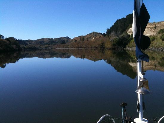 Whanganui River: Up river reflections