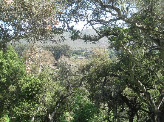 Saddle Mountain RV Park: View of Carmel from camp