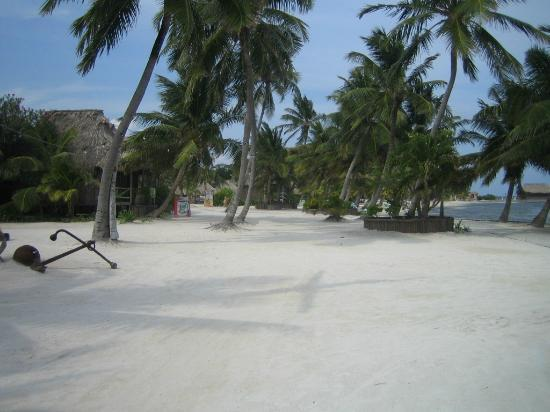 White Sands Cove Resort: By teh beach walk!