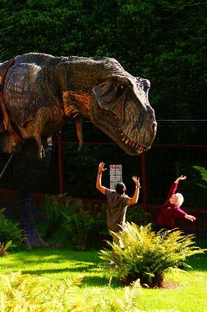 Ilfracombe, UK: Photo with TREX!