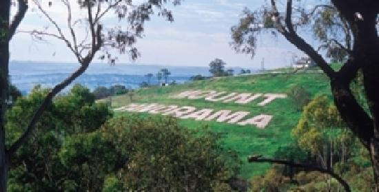 Bathurst Panorama Serviced Apartments: Mount Panorama