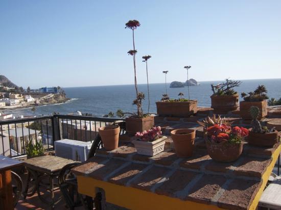 Old Mazatlan Inn : View from Roof