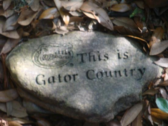 The Magnolia Plantation Bed and Breakfast Inn: GATOR COUNTRY