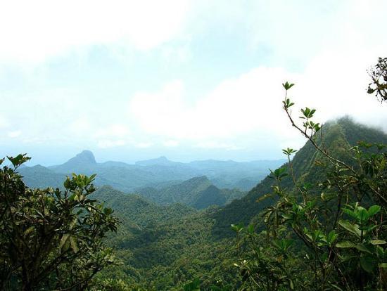 Ilha de São Tomé e Príncipe, São Tomé e Príncipe: Climbing to Pico de Sao Tome