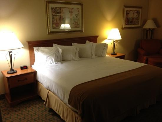 Holiday Inn Express Hotel & Suites Tavares: Great room!