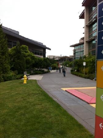 写真Microsoft Visitor Center枚