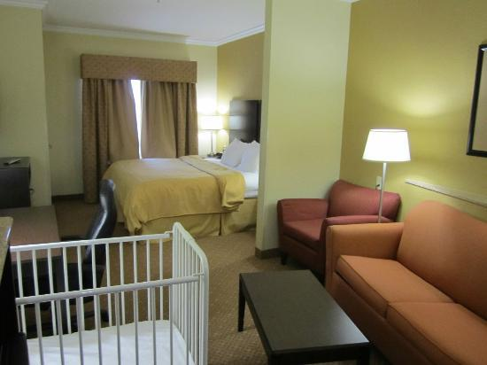 Comfort Suites Elizabethtown : King Suite
