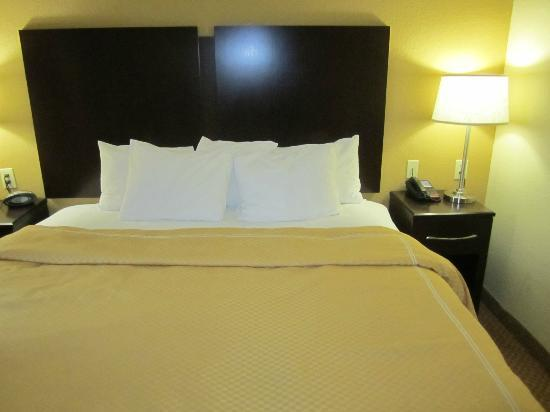 Comfort Suites Elizabethtown: King Suite