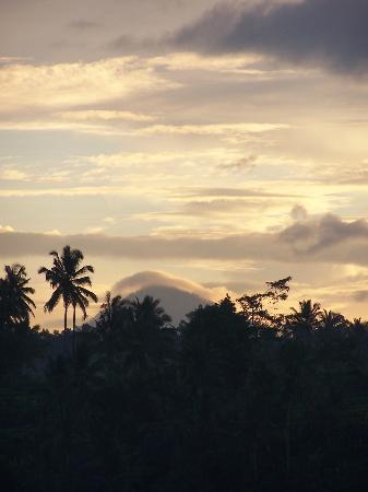 Alam Sari: Distant views