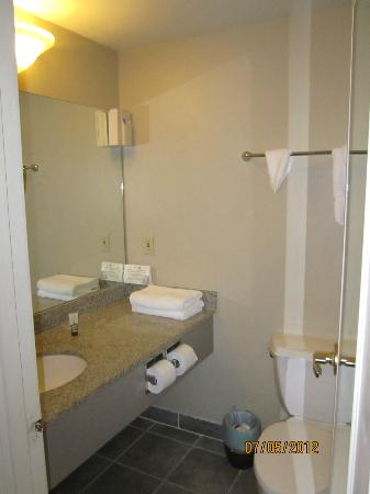 Magnolia Hotel Omaha : Smallest bathroom in a 5* suite