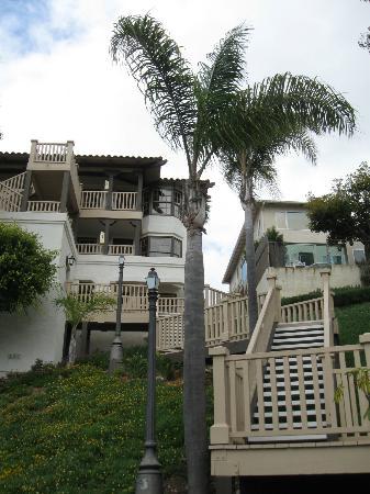 Best Western Plus Hacienda Hotel Old Town: Looking up at building #6