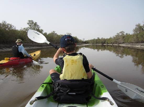 Noukhada Adventure Company: Early morning in the mangroves