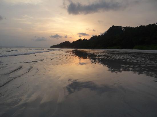 Radhanagar Beach: sunset