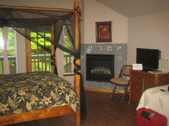 Bamboo Orchid Cottage Bed & Breakfast: The fireplace in my bedroom (I just turned it off).