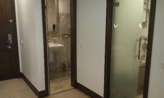 El Aurassi Hotel : Toilet and bathroom are separate