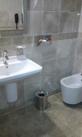 El Aurassi Hotel: Newly done up toilet