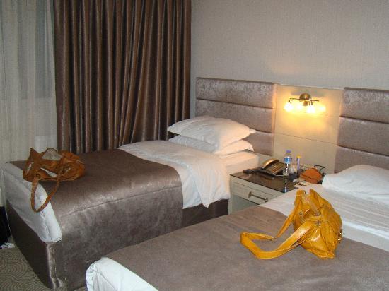 Amethyst Hotel Istanbul: Amethyst