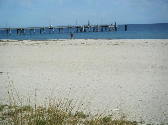 Oaks Plaza Pier Apartment Hotel: Beach outside apartments with pier