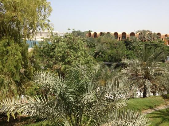 Golden Tulip Al Jazira : view from hotel room