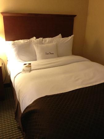 Doubletree Hotel Boston/Westborough: bed
