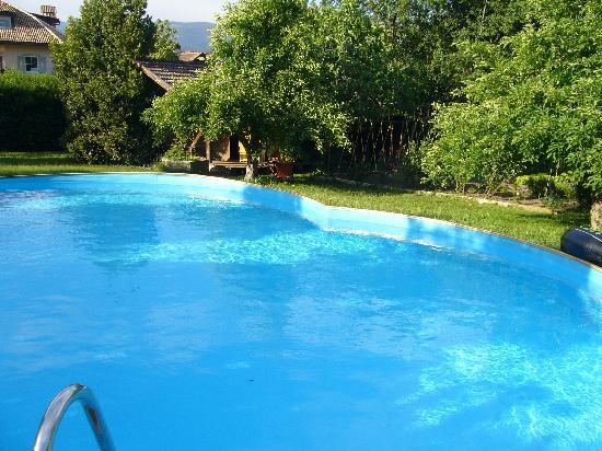 Gasthof WASTL Albergo: Schwimmbad und Liegewiese