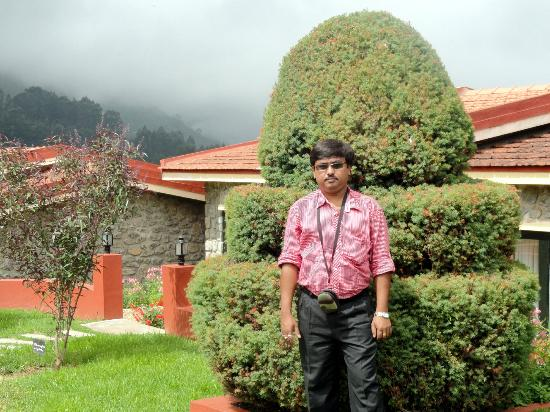 Hill Country Kodaikanal: hotel lawn and tree sculptures
