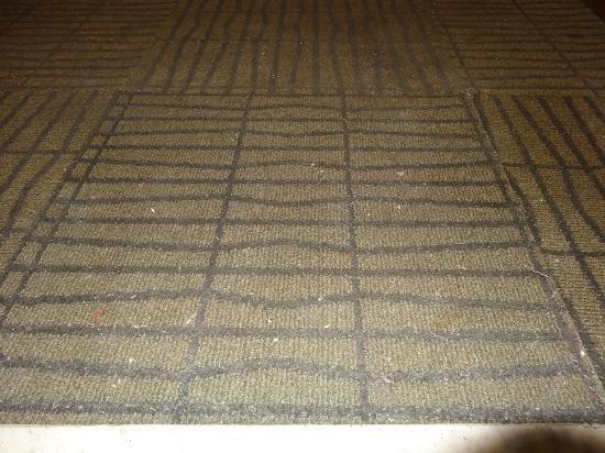Carpet Outside Our Front Door, Not Vacuumed For Days   Picture Of Days  Hotel Aqaba, Aqaba   TripAdvisor