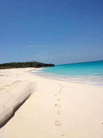 Shannas Cove Resort: The footprints on the beach are usually yours alone!