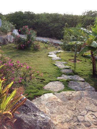 Shannas Cove Resort: Lovely island landscaping