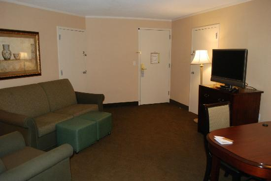 Embassy Suites by Hilton Baltimore BWI - Washington Intl. Airport: Living room