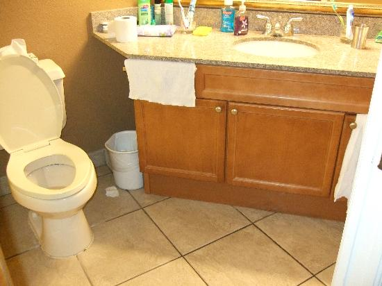 Legacy Vacation Resorts-Lake Buena Vista: bathroom sink