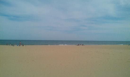 Sea Bay Hotel: The Beach