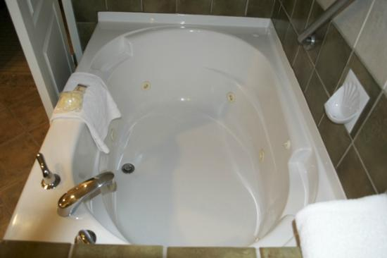 Sheraton Suites Calgary Eau Claire: Jetted Tub in bathroom