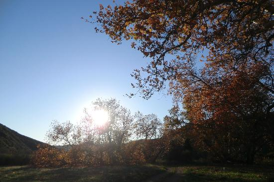 Big Sycamore Canyon Hike: Sun descending in Sycamore Canyon