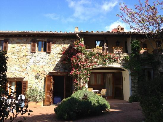 Villa Le Barone : Estate