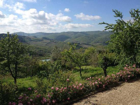 Villa Le Barone : Surroundings
