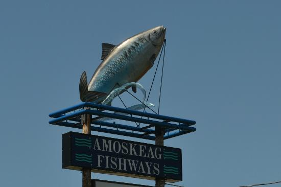 Amoskeag Fishways Learning and Visitors Center