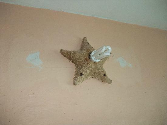 Hotel El Caracol: Lamp