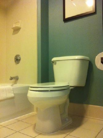 Hyatt Place Birmingham / Inverness: nice tub and toilet