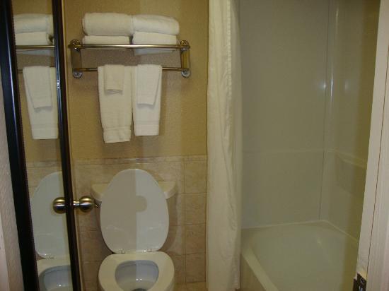 BEST WESTERN Executive Hotel : Salle de bain très correcte