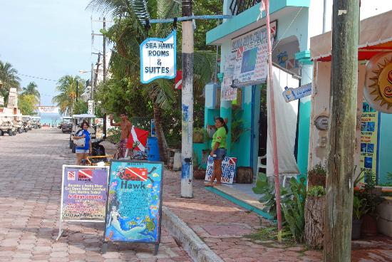 Sea Hawk: Seahawk Suites and Dive Shop