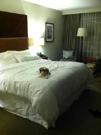 The Westin Mount Laurel: comfy stay!