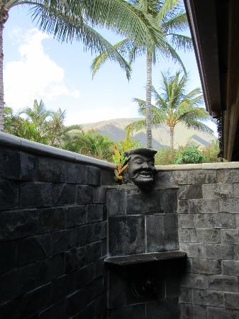Ho'oilo House: The awesome shower and view