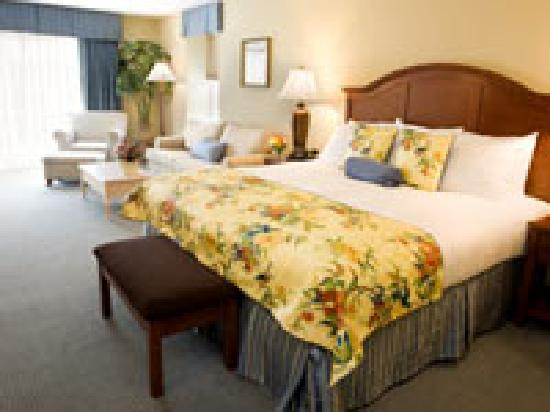 Hotel Rehoboth: Suite sized king guest room
